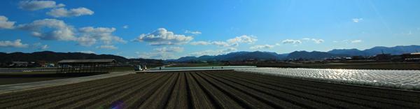 農業を始めるための広大な農地