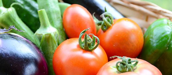育てたい野菜のイメージ画像